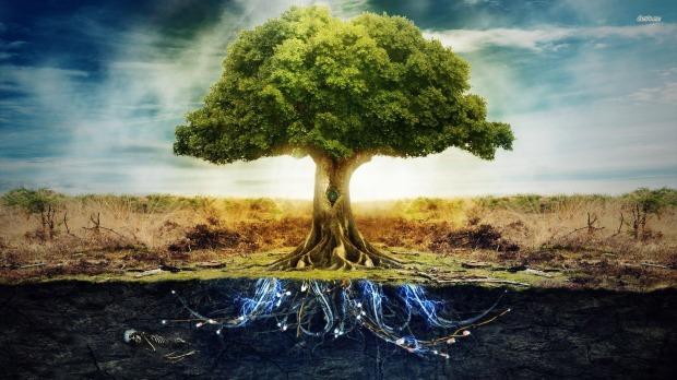 24091-tree-of-life-1920x1080-digital-art-wallpaper.jpg